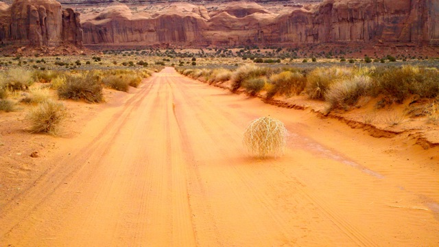 rp_Tumbleweed-in-Monument-Valley.jpg